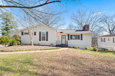Chattanooga Single Family Home For Sale: 3924 Laird Ln