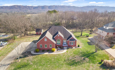 Ringgold Single Family Home For Sale: 434 Morning Glory Dr