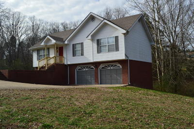 Ringgold Single Family Home For Sale: 211 Shady Brook Ln