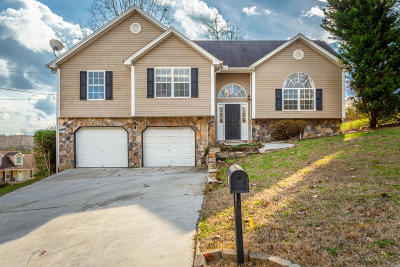 Ringgold Single Family Home Contingent: 111 Andrew Rd