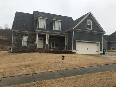 Ringgold Single Family Home For Sale: 247 Vineyard Blvd