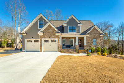 Ringgold Single Family Home For Sale: 46 Myrtle Oak Way