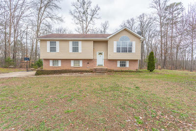 Ringgold Single Family Home Contingent: 112 Lerae Rd