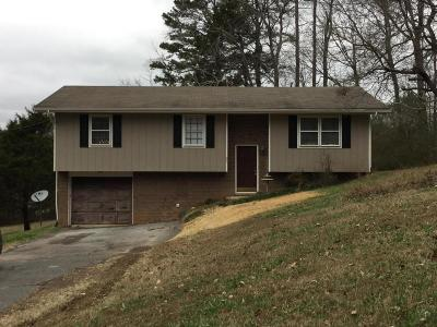 Ringgold Single Family Home For Sale: 93 Logan Ln