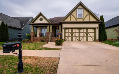 Ooltewah Single Family Home For Sale: 9633 Rookwood Cir
