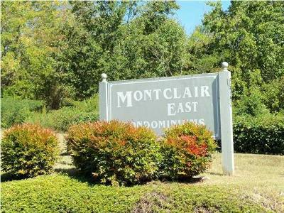 Chattanooga Condo For Sale: 800 Reads Lake Rd #313