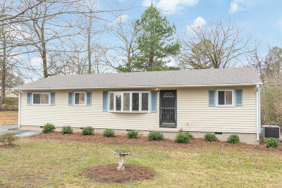 Chattanooga Single Family Home For Sale: 7715 Basswood Dr