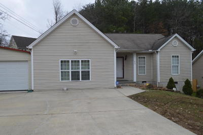 Hixson Single Family Home For Sale: 860 Lower Mill Rd