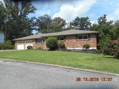 Hixson Single Family Home For Sale: 5817 Ragnar Dr