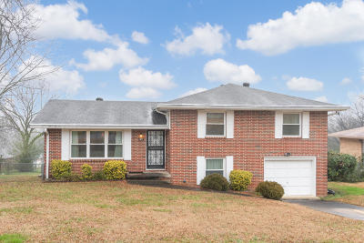 Chattanooga Single Family Home For Sale: 1617 Miriam Ln