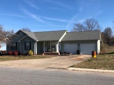 Ringgold Single Family Home For Sale: 210 Misty Ridge Ln