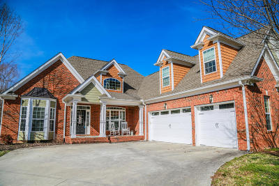 Ooltewah Single Family Home For Sale: 3251 Stillmeadow Ln