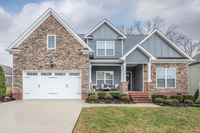 Ooltewah Single Family Home For Sale: 8752 Walnut Leaf Dr