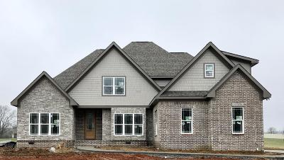 Apison Single Family Home For Sale: 4416 Hope Ranch Dr #Lot 18