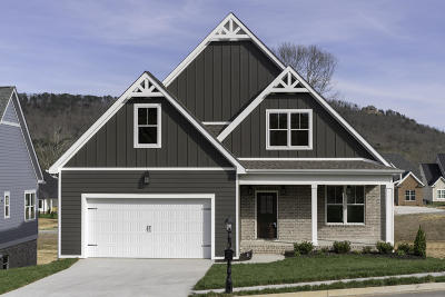 Ooltewah Single Family Home For Sale: 2393 Weeping Willow Dr #75