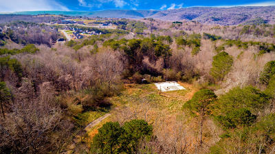 Residential Lots & Land For Sale: 9891 Lovell Rd
