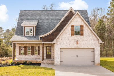 Ooltewah Single Family Home For Sale: 9490 Silver Stone Ln #Lot 31