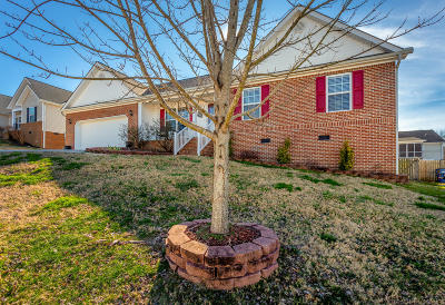Ringgold Single Family Home For Sale: 102 Heatherwood Ln