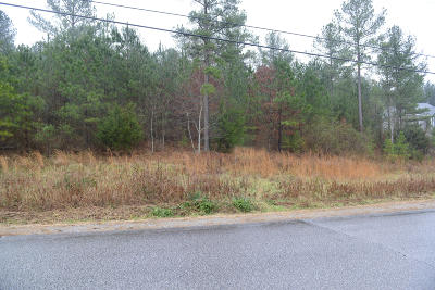 Dayton Residential Lots & Land For Sale: 3457 Blythe Ferry Rd