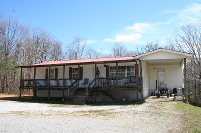 Flat Rock Single Family Home For Sale: 25656 Alabama Hwy 71