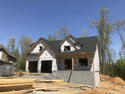 Ooltewah Single Family Home Contingent: 9417 Silver Stone Ln #17