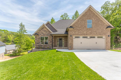 Soddy Daisy Single Family Home For Sale: 619 Sunset Valley Dr