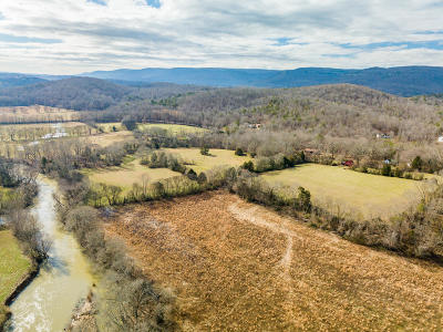 Sequatchie County Single Family Home For Sale: 470 Press Pickett Rd