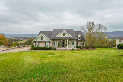 Ringgold Single Family Home Contingent: 46 Crestview Cir