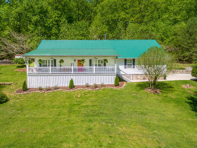 Single Family Home For Sale: 1131 Mountain Rd