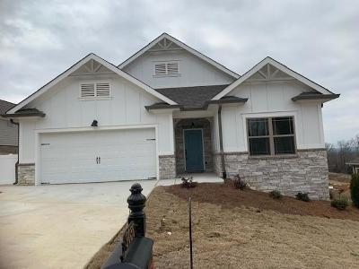 Ooltewah Single Family Home For Sale: 9036 Bear Claw Crossing #284