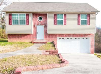 Chattanooga Single Family Home For Sale: 4302 Crestview Dr