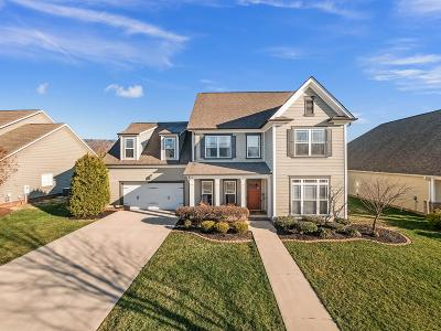 Ooltewah Single Family Home For Sale: 8379 Front Gate Cir