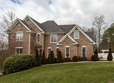 Ooltewah Single Family Home For Sale: 9187 Dayflower Dr