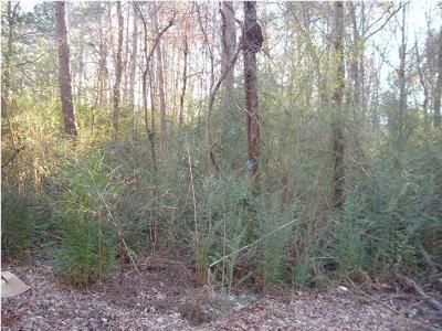 Residential Lots & Land For Sale: 9201 W Ridge Trail Rd