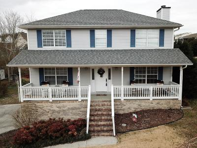 Ringgold Single Family Home For Sale: 325 Misty Ridge Ln
