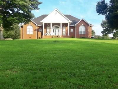 Ooltewah Single Family Home For Sale: 8400 Heron Cir