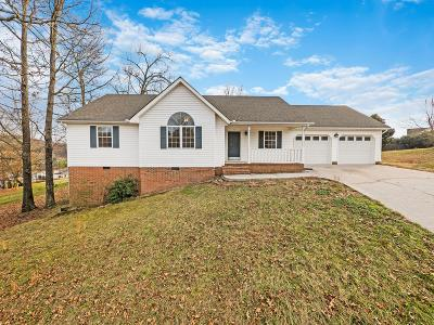 Ringgold Single Family Home Contingent: 173 Andrew Rd