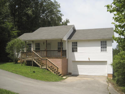 Chattanooga Single Family Home For Sale: 2410 Janeview Dr