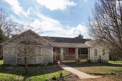 Rising Fawn Single Family Home For Sale: 123 Byrds Chapel Rd