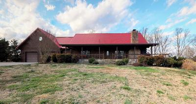 Benton Single Family Home For Sale: 7338 Highway 411