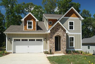 Ooltewah Single Family Home For Sale: 9423 Silver Stone Ln #Lot 16