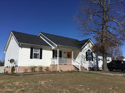 Ringgold Single Family Home For Sale: 22 Whitlestick Dr