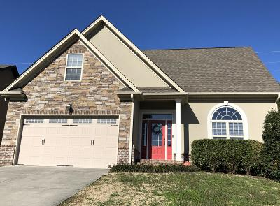 Chattanooga Single Family Home For Sale: 6616 Kenton Ridge Cir