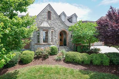 Chattanooga Single Family Home For Sale: 586 Hill Pointe Ln