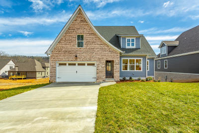 Ooltewah Single Family Home For Sale: 2389 Weeping Willow Dr