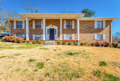 Ringgold Single Family Home For Sale: 40 Highland Ter
