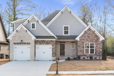Chattanooga Single Family Home For Sale: 1006 Stone Ledge Ln #Lot 14
