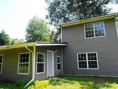 Ringgold Single Family Home For Sale: 384 Dedmon Rd