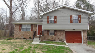 Ringgold Single Family Home Contingent: 88 Sparrow Ln