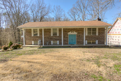 Ringgold Single Family Home For Sale: 313 Maple Way